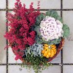 Herbstlicher Blumengruß