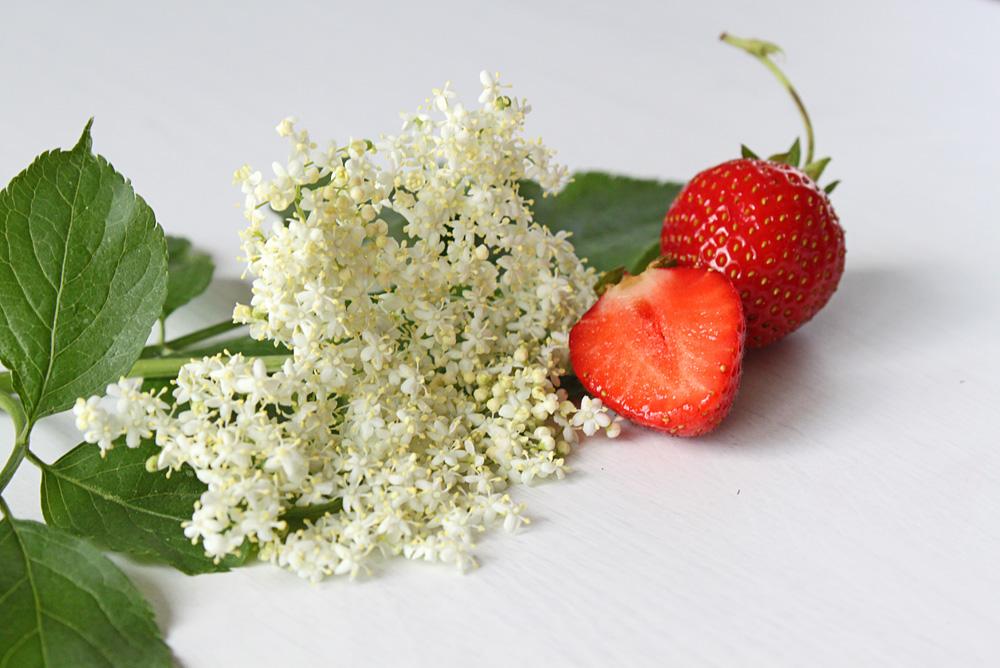 Erdbeer-Holunder Drops | orangenmond.at