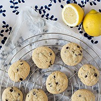 Lemon Chocoloate Chip Cookies | orangenmond.at